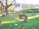 Skulptūrų parkas prie seniūnijos (Žalioji a. 3)